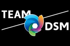 logo team dsm